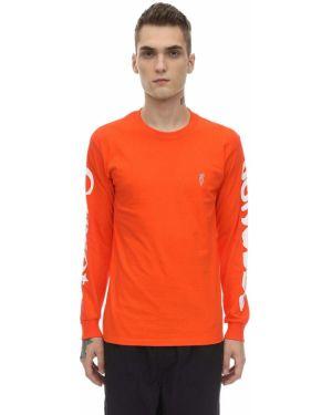Prążkowany pomarańczowy t-shirt Carrots X Jungle