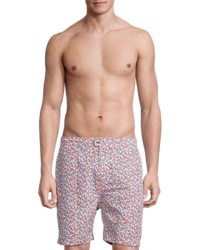 Boardshorty w paski z printem Solid & Striped