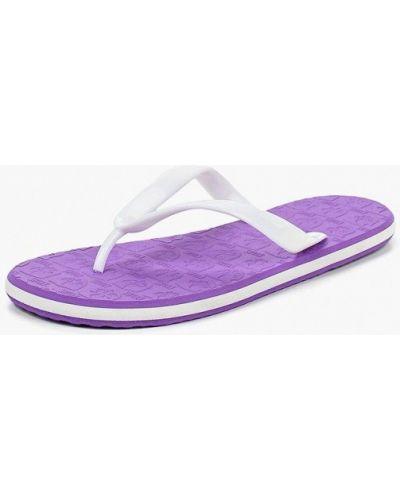 Фиолетовые сланцы Evars
