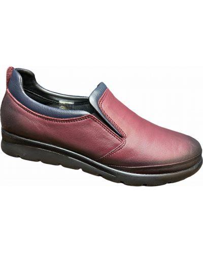Кожаные туфли - бордовые Nod Trend