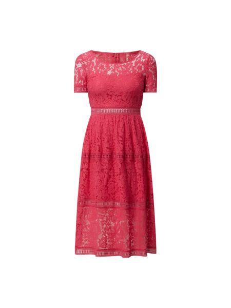 Różowa sukienka midi rozkloszowana koronkowa Apart Glamour