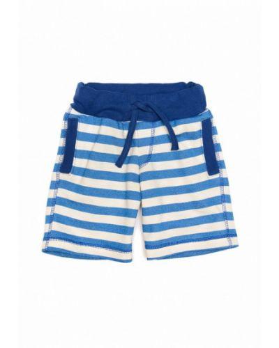 Синие шорты Ardomi