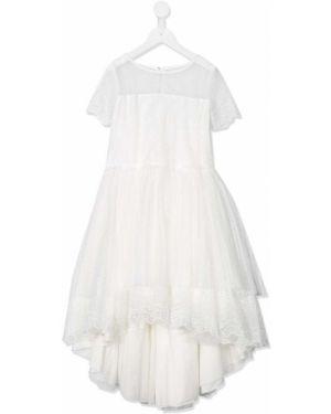 Sukienka midi rozkloszowana koronkowa krótki rękaw Aletta
