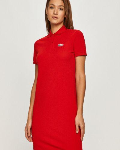 Czerwona sukienka mini dzianinowa casual Lacoste