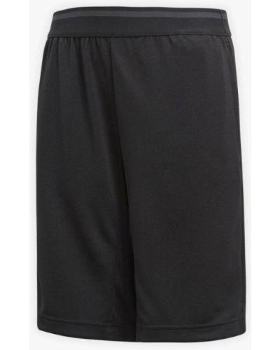 Черные шорты спортивные Adidas