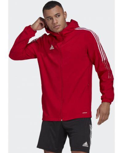 Футбольная красная куртка Adidas