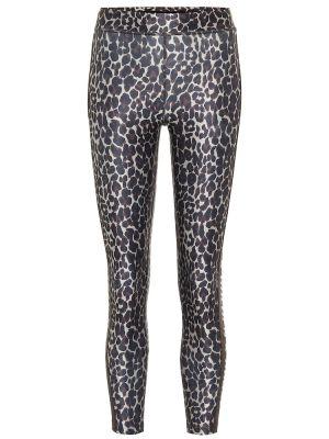 Спортивные брюки с леопардовым принтом желтый Golden Goose