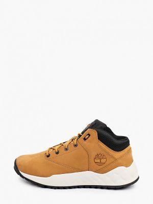 Низкие кроссовки - коричневые Timberland