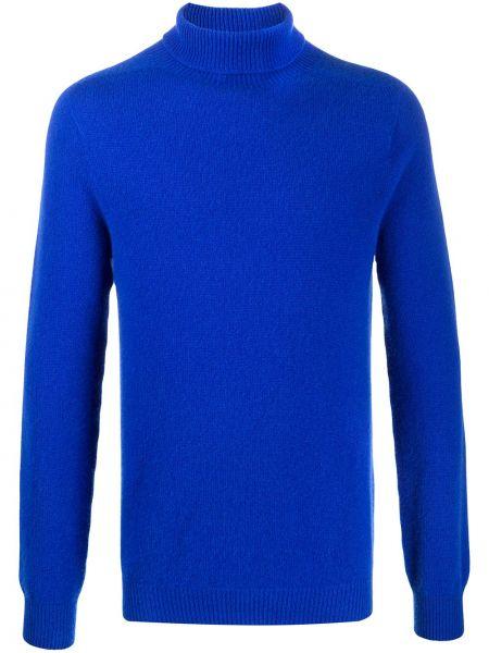 Prochowiec niebieski Mackintosh