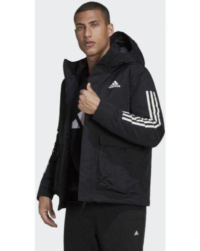 Утепленная куртка в полоску с нашивками с капюшоном Adidas