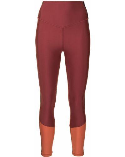 Pomarańczowe legginsy The Upside