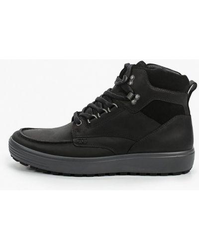 Черные ботинки из нубука Ecco