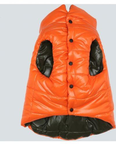 Оранжевая пуховая жилетка с капюшоном Moncler