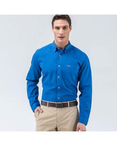 Рубашка хлопковая синий Lacoste