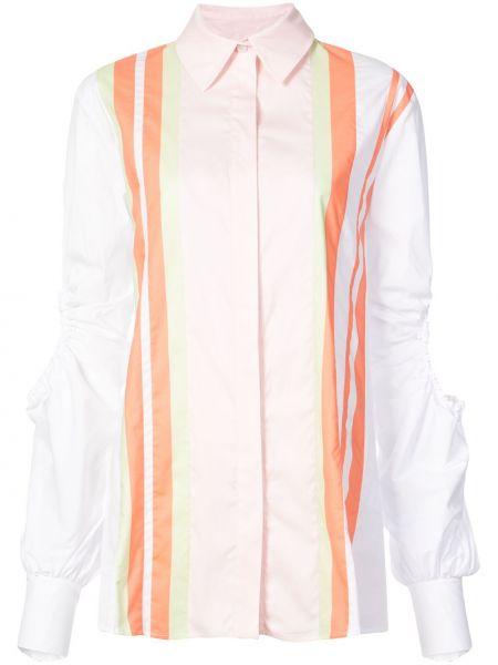 Koszula bawełniana w paski z długimi rękawami Peter Pilotto