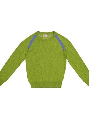 Zielony sweter bawełniany Morley