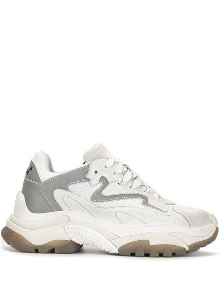 Замшевые белые кроссовки на платформе на шнуровке со вставками Ash