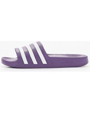 Сланцы фиолетовый Adidas