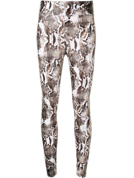 Czarne legginsy z wysokim stanem z printem Koral