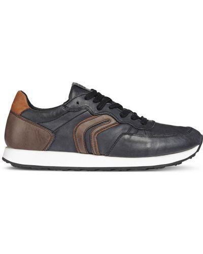 Кожаные ботинки оранжевый черные Geox