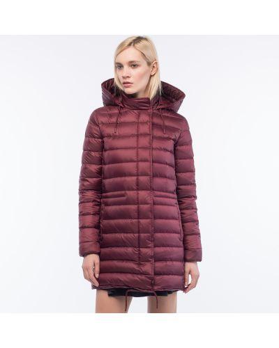 Куртка с капюшоном с перьями Lacoste