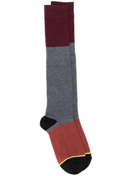 Серые хлопковые носки эластичные Plan C