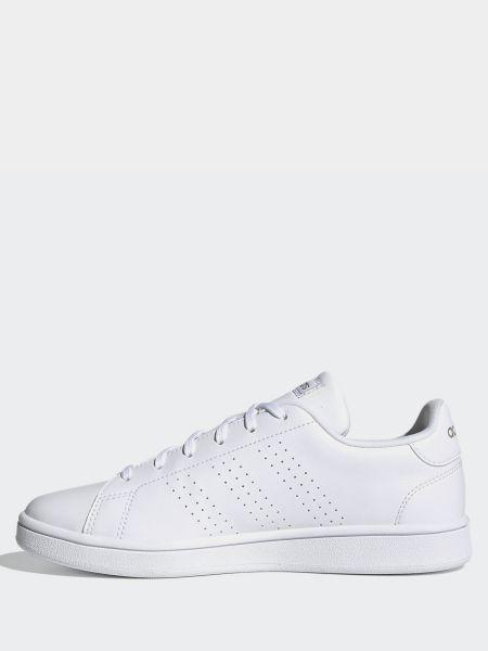 Кожаные белые низкие кеды на шнурках Adidas