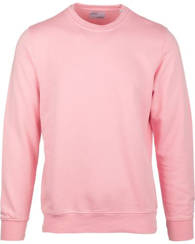 Różowy sweter Colorful Standard