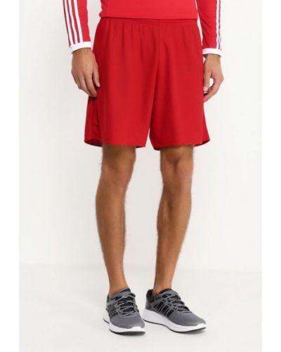 Спортивные шорты красный Adidas