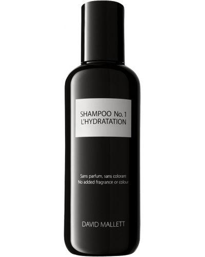Шампунь для волос David Mallett