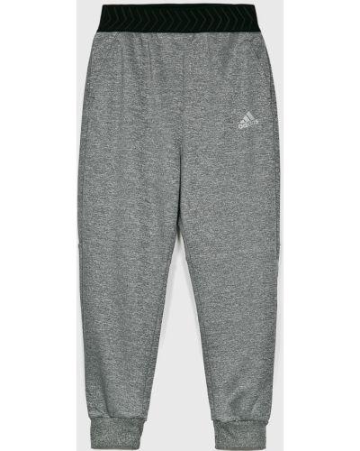 Spodnie szary Adidas Performance