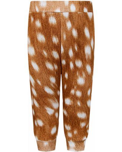 Коричневые спортивные брюки Molo
