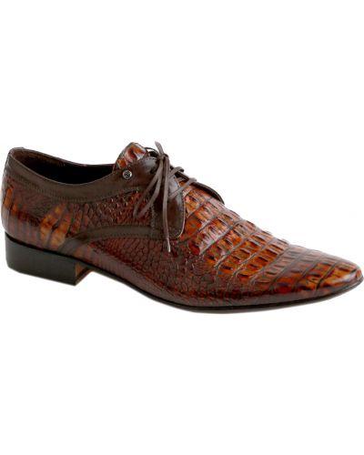Кожаные туфли - коричневые Mario Bruni
