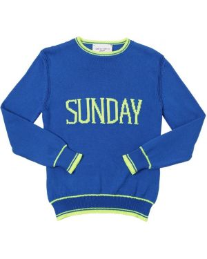 Niebieski pulower bawełniany w paski Alberta Ferretti
