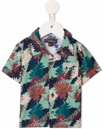 Koszula krótki rękaw Velveteen