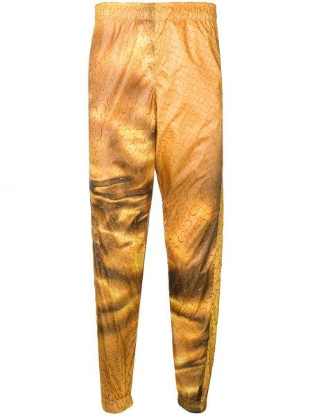 Złote żółte spodnie z printem Cottweiler