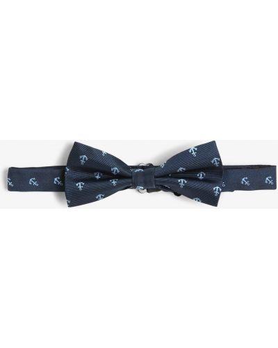 Niebieski muszka Andrew James