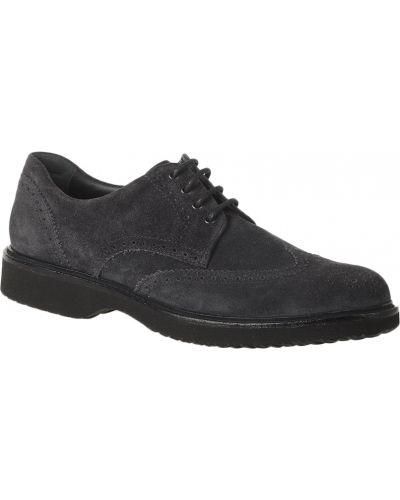 Кожаные туфли - серые Hogan