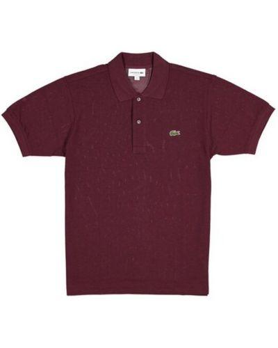 Klasyczna klasyczna koszula Lacoste