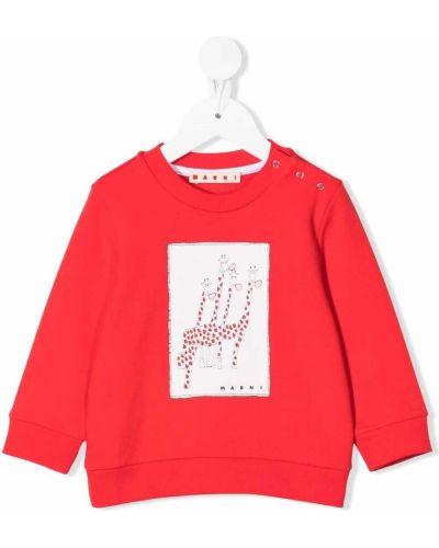 Bluza bawełniana Marni Kids