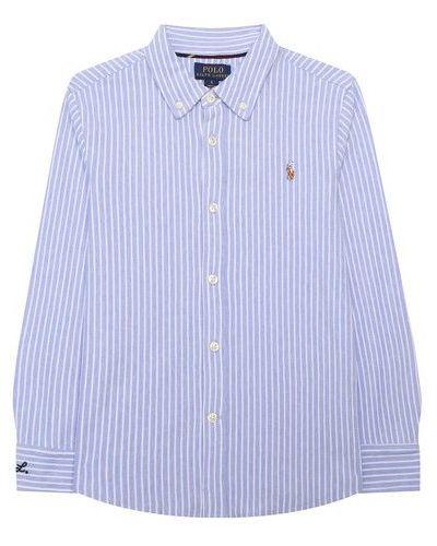 Хлопковая синяя рубашка Polo Ralph Lauren