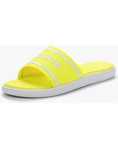 Желтые сланцы Lacoste