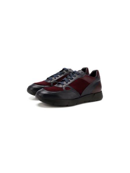 Кожаные кроссовки - синие Andrea Campagna