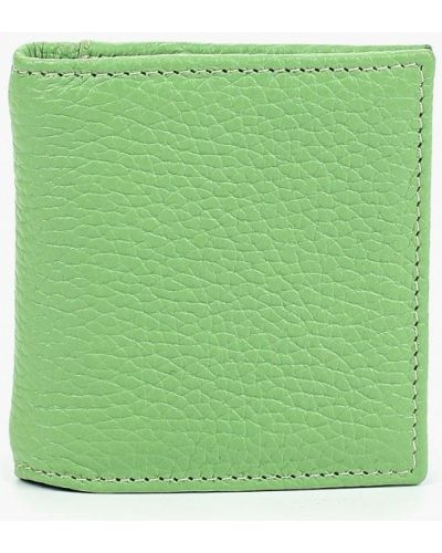 Зеленый кошелек Olci