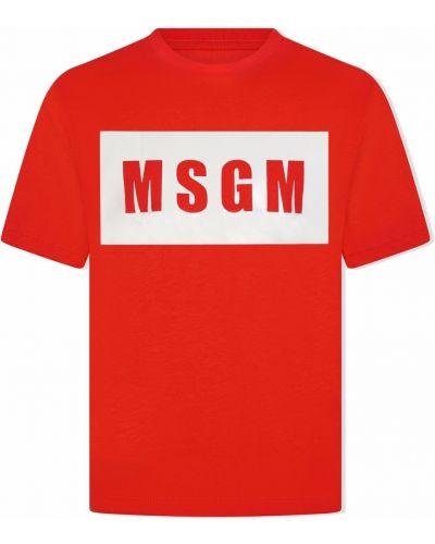 T-shirt krótki rękaw Msgm Kids