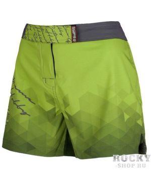 Спортивные брюки зеленый Extreme Hobby