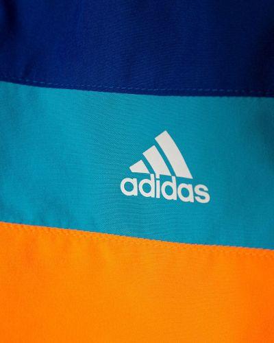 Шорты Adidas Performance