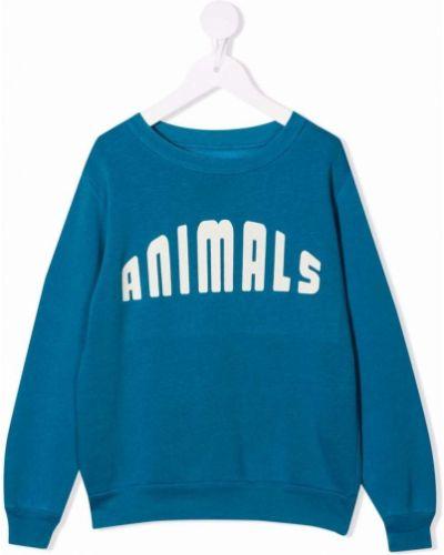 Niebieska bluza długa z długimi rękawami bawełniana The Animals Observatory