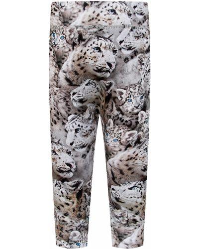 Серые хлопковые брюки Molo