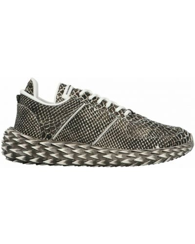Sneakersy - szare Giuseppe Zanotti